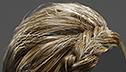 <br> Ellie Porfyridou <br> Graduation Work: <br> Real-time Hair